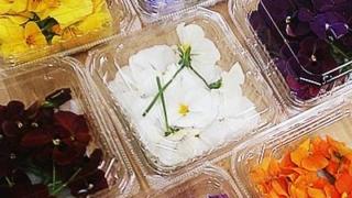 食べるお花